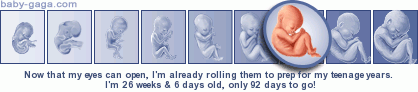 pregnancy week by week