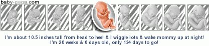 dev351ps___.png